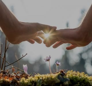 naturopathy-wellness-canberra
